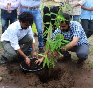 Plantation by Shri. Shekhar Singh